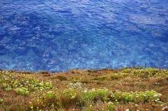 Kustachtergrond - Clifftop-Mening van de Oceaan Royalty-vrije Stock Foto's