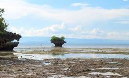 Kustberg med grönska under lågvatten Liten klippa med träd i havsvatten Royaltyfri Fotografi