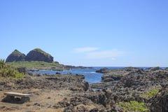 Kusten av ön Arkivbilder