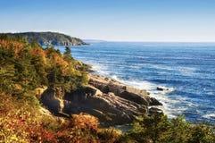 Kusten av Atlanticet Ocean stenig skogsbevuxen kustnationalpark av Acadia USA maine Royaltyfri Bild