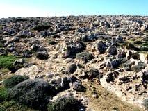Kusten av Cypern Arkivbild
