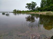 Kusten av dammet på våren, dystert väder royaltyfria bilder