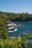 Kusten av den Onomea fjärden, Hawaii Arkivfoton
