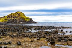 Kusten av en ö i Irland royaltyfri bild
