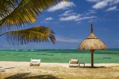 Kusten av en tropisk ö med palmträd och vitsand Arkivbild