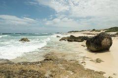 Kusten av havet med vågor Fotografering för Bildbyråer