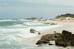 Kusten av havet med vågor Arkivbild