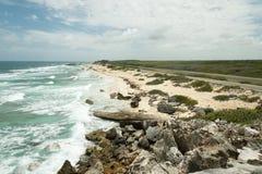 Kusten av havet med vågor Royaltyfria Bilder