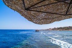 Kusten av Röda havet Arkivfoto