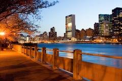 Kusten av Roosevelt Island och horisonten av midtownen i Manhattan Fotografering för Bildbyråer