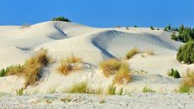 Kusten av Sardinia, Italien - Porto Pino strand Arkivbild