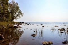 Kusten av sjön Onego Royaltyfri Foto