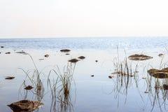 Kusten av sjön Onego Arkivfoto