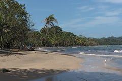 Kusten med vaggar på Punta Manzanillo i Gandoca Manzanillo den nationella djurlivfristaden, Costa Rica Royaltyfria Foton