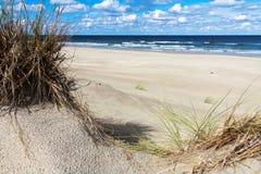 Kusten på en ö i Nederländerna Royaltyfri Foto