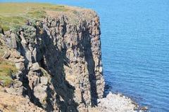 Kusten vaggar landskap i Island. Arkivfoto