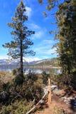 Kusten van Meer Tahoe royalty-vrije stock foto