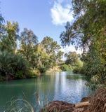 Kuster av Jordan River på den dop- platsen, Israel arkivbild