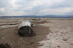 Kuster av sjön Garda Arkivbild