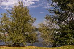 Kuster av sjön Maggiore med växter, solen och fartyg Arkivbild