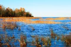 Kusterna av Lake Huron Fotografering för Bildbyråer