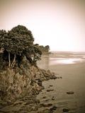 kustfransmantappning arkivbilder