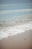Kustgolven op het zandige strand Stock Afbeeldingen