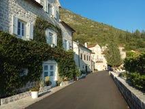 Kusthuis dat met groene klimop werd behandeld royalty-vrije stock foto