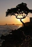 kustiv-solnedgång royaltyfria foton