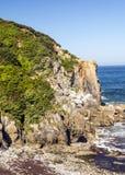 Kustlijn in Asturias stock afbeelding