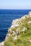 Kustlijn in Asturias stock foto's