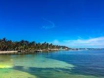 Kustlijn in Caye-Breeuwijzer, Belize royalty-vrije stock foto