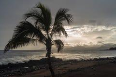 Kustlijn, Lanzarote, Spanje stock foto
