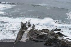 Kustlijn op Lanzarote stock afbeeldingen