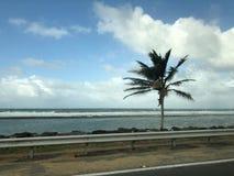 Kustlijn in Puerto Rico royalty-vrije stock afbeelding