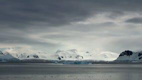 Kustlijn van Antarctica stock video