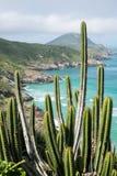 Kustlijn van Arraial do Cabo, Rio de Janeiro, Brazilië stock foto
