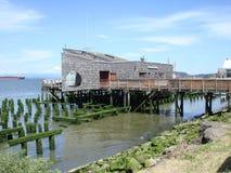 Kustlijn van de rivier van Colombia Stock Fotografie