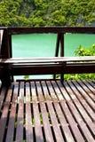 kustlijn van een groene lagune en een boom balcon Stock Fotografie