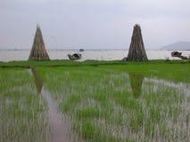 Kustlijn Vietnam royalty-vrije stock afbeeldingen