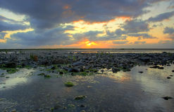 kustlinje över stenig solnedgång Royaltyfri Bild