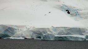 Kustlinje av Antarktis arkivfilmer