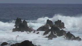 Kustlinje av Hawaii den stora ön arkivfilmer