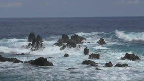 Kustlinje av Hawaii den stora ön stock video