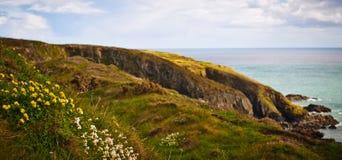 Kustlinje i Irland Arkivbild