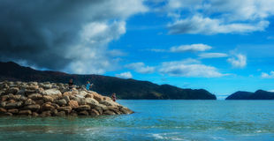 Kustlinje i Nya Zeeland Fotografering för Bildbyråer