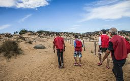 Kustlinje i Sardinia Italien Fotografering för Bildbyråer