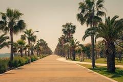 Kustlinje och promenad i Limassol, ? Cypern, Europa, medelhav Ljus solig dag och bl?tt vatten och himmel retro royaltyfria foton