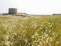 Kustlinje och sandiga dyn av den Jersey ön Fotografering för Bildbyråer