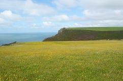Kustlinje på Morwenstow, Cornwall Royaltyfria Bilder